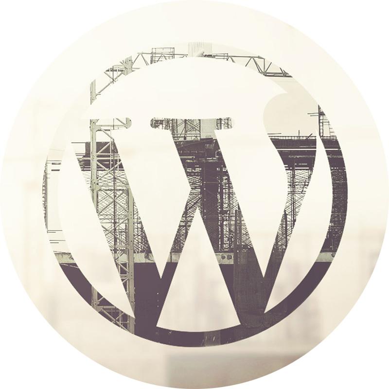 Programació a mida en Wordpress i plugins